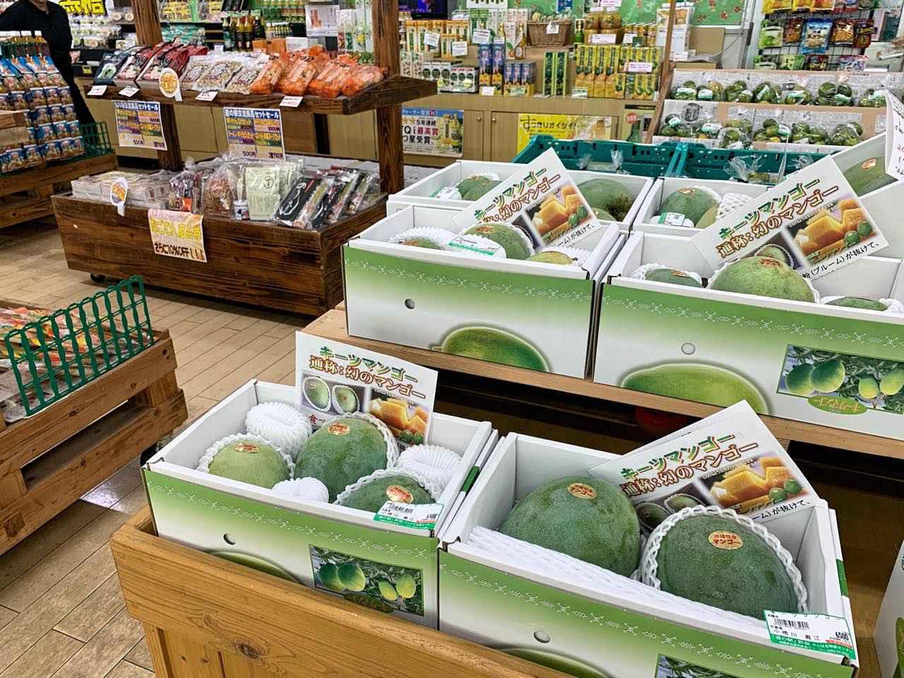 画像4: 穏やかな秋風の季節には沖縄本島北部へ。コロナ禍でも営業を続ける各地の取り組みをレポート