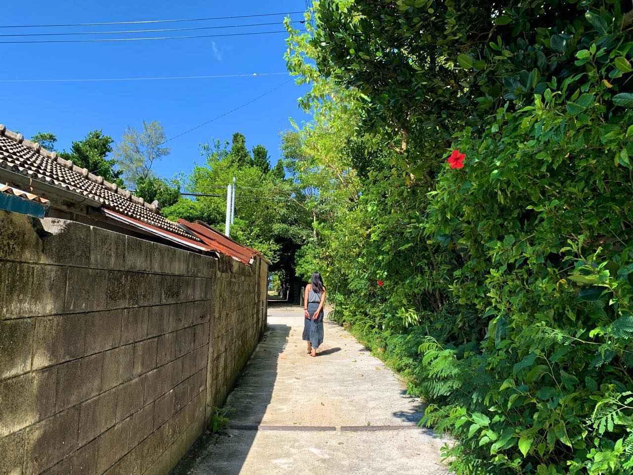 画像2: 穏やかな秋風の季節には沖縄本島北部へ。コロナ禍でも営業を続ける各地の取り組みをレポート