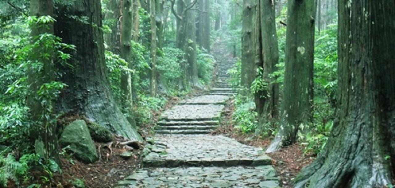画像: 熊野古道の中でも石畳が美しい大門坂