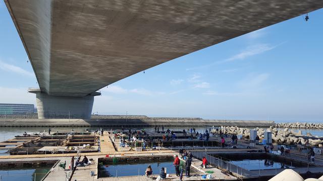 画像4: 関西国際空港の対岸の町、「田尻町」のステキなスポットをご紹介!
