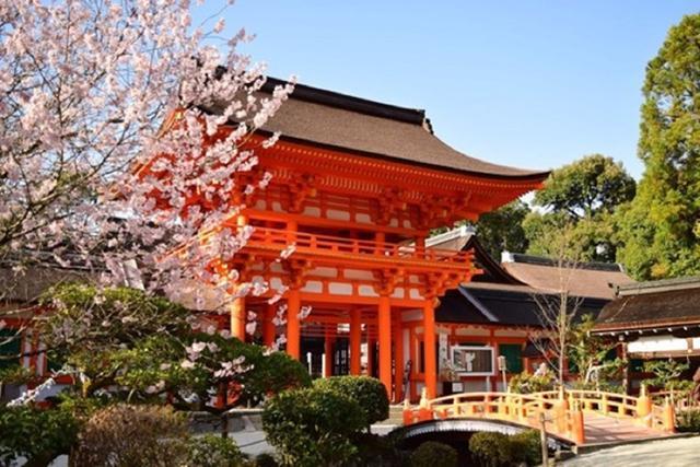 画像: 春の賀茂別雷神社