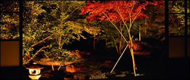 画像: 秋の庭園