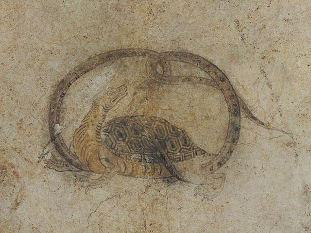 画像: 北を司る「玄武」には、蛇が絡まった亀の姿が描かれています