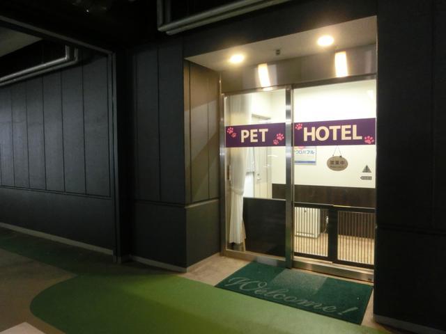 画像1: 羽田空港雑学File 3 早朝から最終便まで、大切なペットを預かるペットホテルがあります