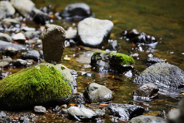 画像3: 憩いの名瀑「峨瓏(がろう)の滝」から、森へ