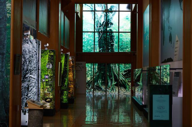 画像1: 白神の入り口。「白神山地世界遺産センター(藤里館)」