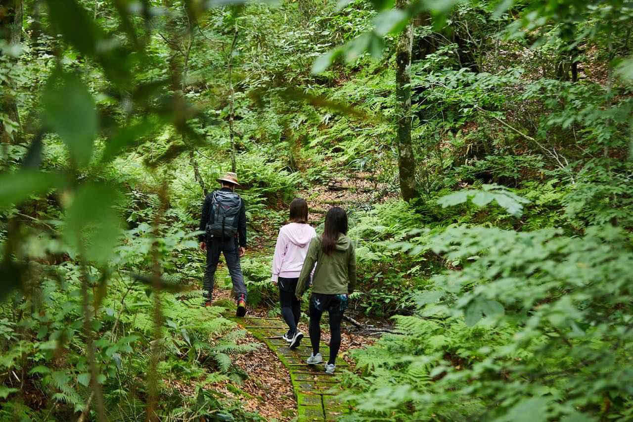 画像1: 小さな森に、深い学びが詰まった「岳岱(だけだい)」