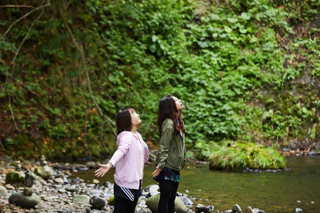 画像2: 憩いの名瀑「峨瓏(がろう)の滝」から、森へ
