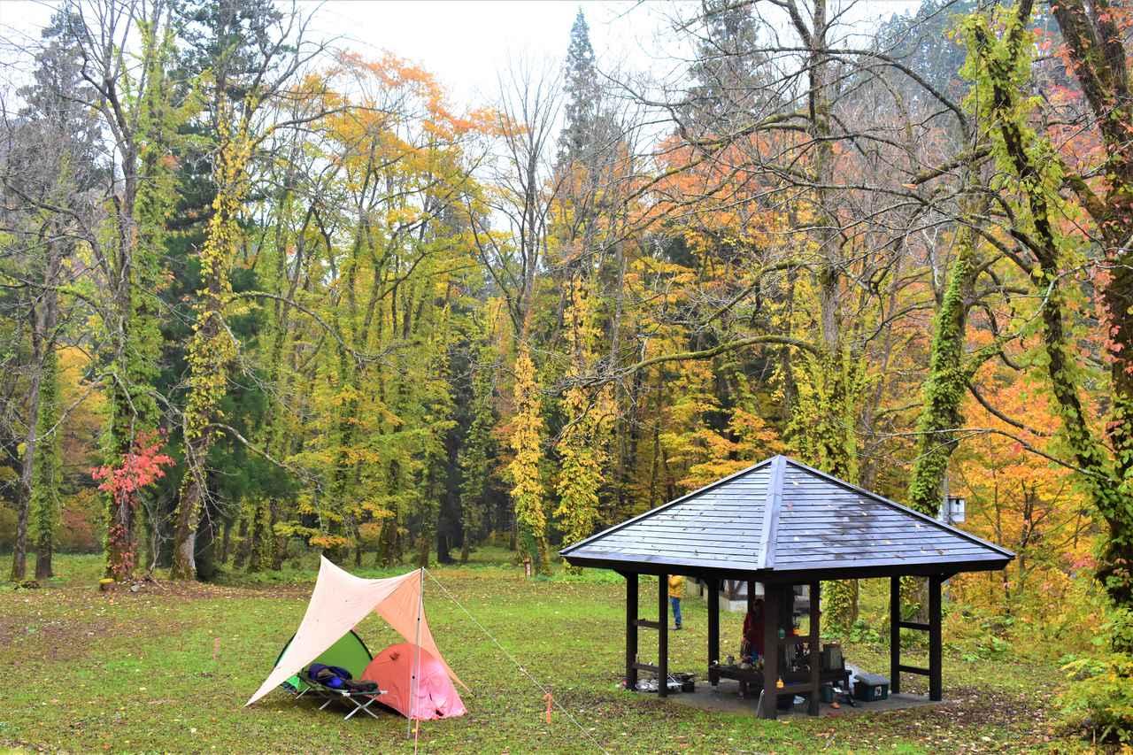 画像: 野趣溢れる野営拠点「くるみ台キャンプ場」