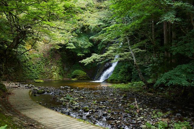 画像1: 憩いの名瀑「峨瓏(がろう)の滝」から、森へ