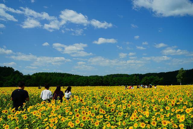 画像8: 青森 自然豊かな八戸市南郷地域で昔ながらの田舎暮らし体験はいかがですか?