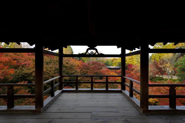 画像2: 通天橋からの眺め