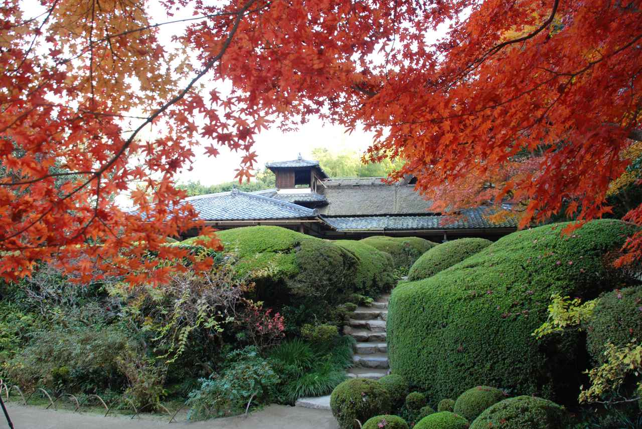 画像: 風趣が満ちる詩仙堂で、白砂に映える紅葉と心静かに向き合う