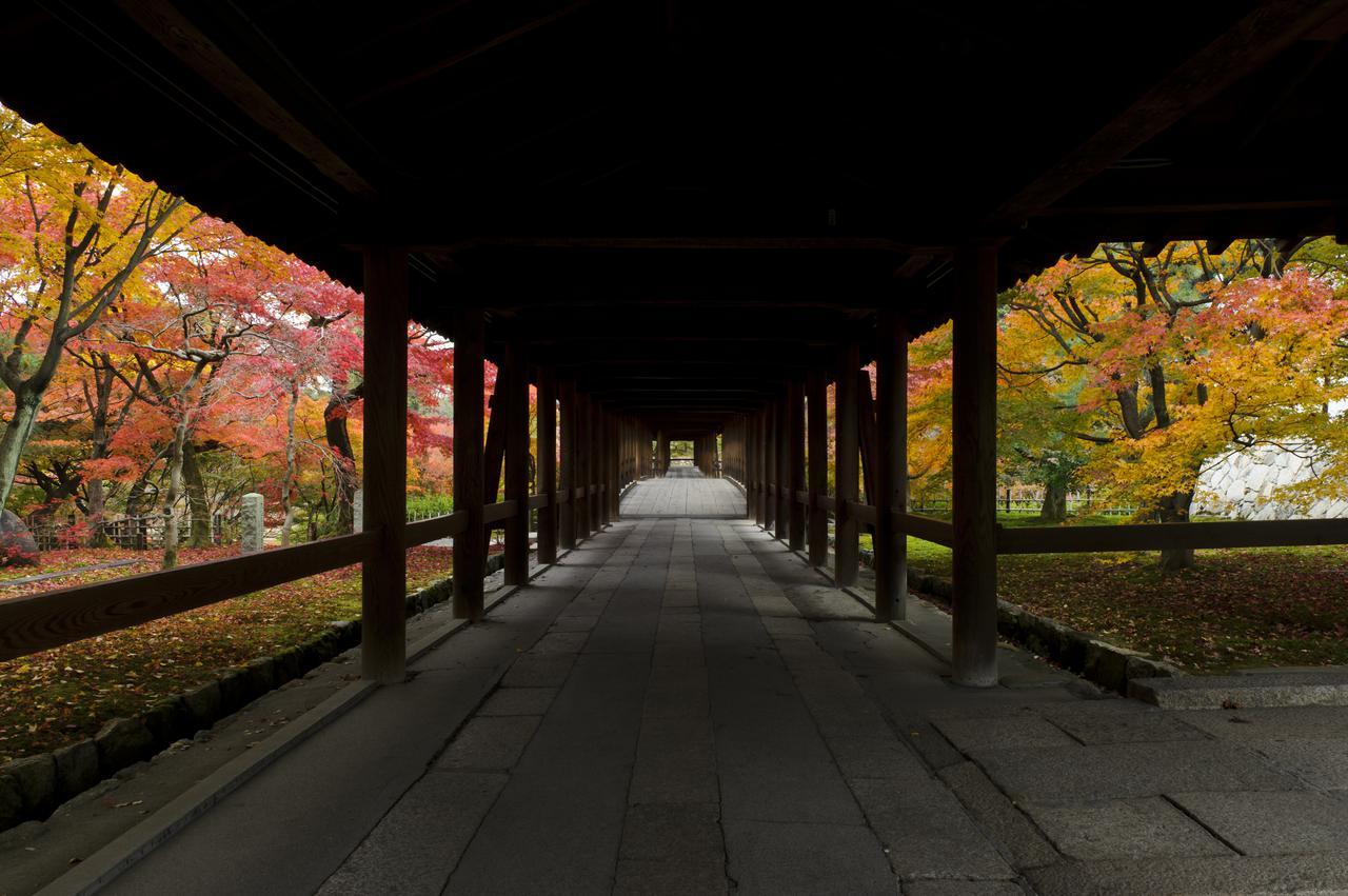 画像1: 通天橋からの眺め