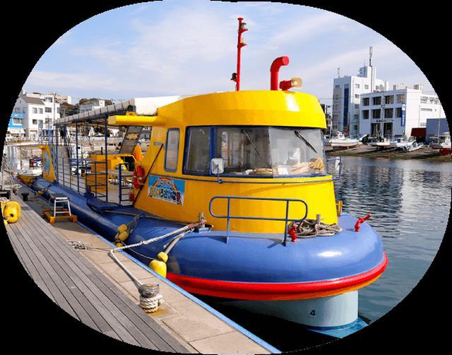 画像6: 関東でマグロ?!三崎で海鮮、絶景、夕日、星空を楽しむ日帰り旅へ