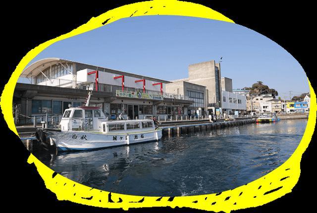 画像3: 関東でマグロ?!三崎で海鮮、絶景、夕日、星空を楽しむ日帰り旅へ