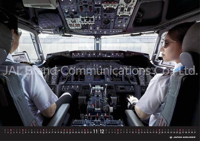 画像: 「JAL PILOT -I have Control-」(3,300円・税込)