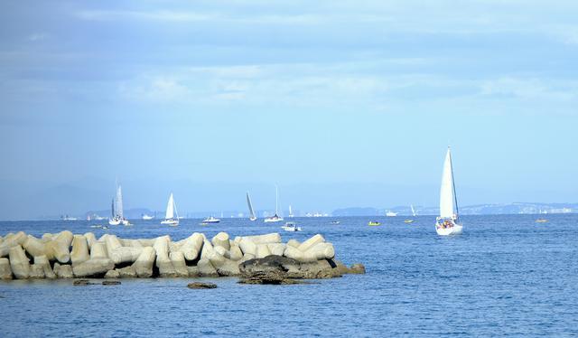 画像: ヨットハーバーから出航する船を目で追いかける。穏やかな休日を過ごしたい方にピッタリの場所です。