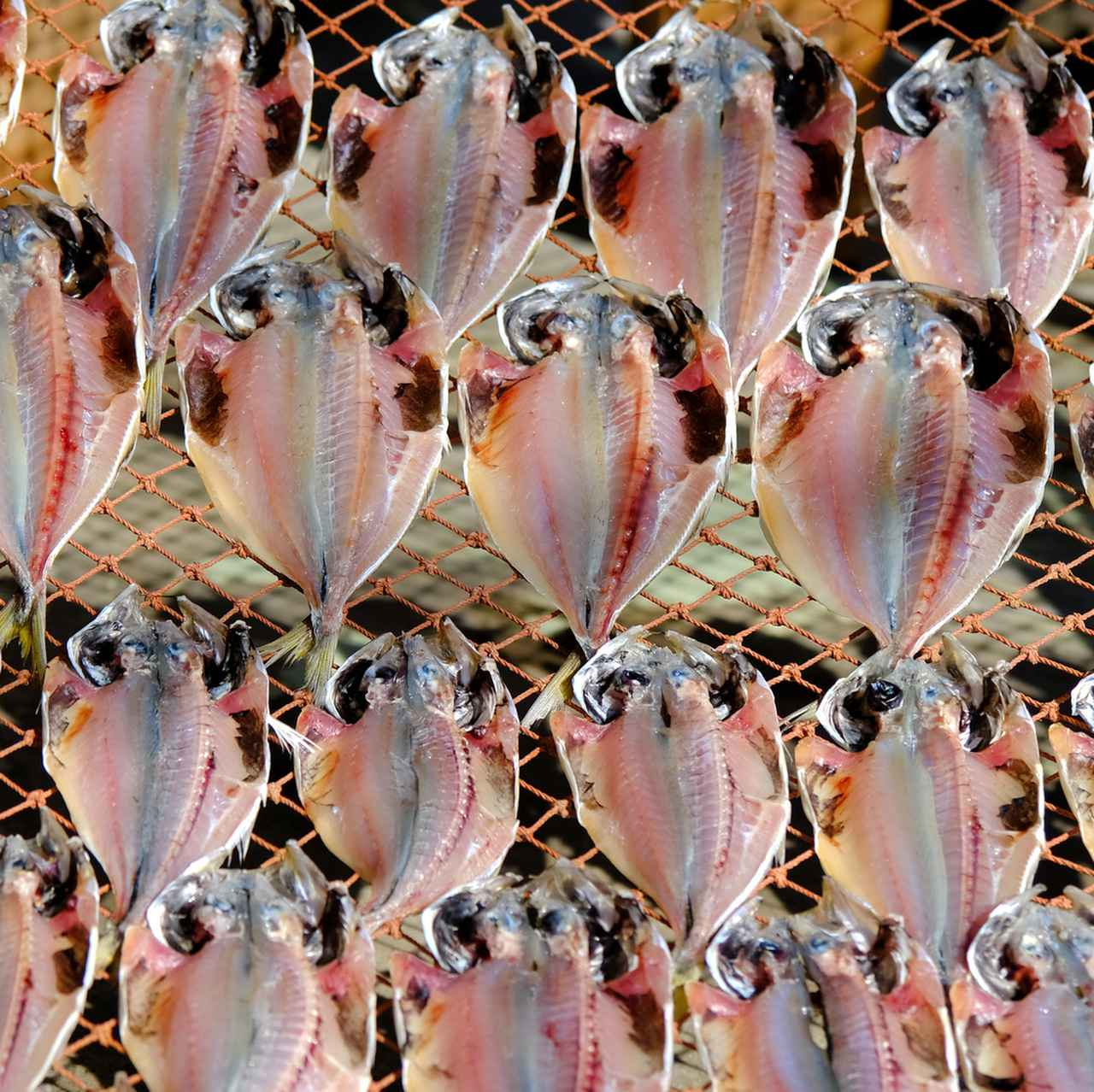 画像: 港周辺の商店街にはたくさんの魚屋さんがありマグロを中心として、三崎で水揚げされた魚を扱っています。軽めに干した鯵はジューシーで焼いてもふっくら。