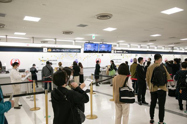 画像2: 目的地は「空」。フライトの楽しみに特化する旅 「JAL 空たびフライト」
