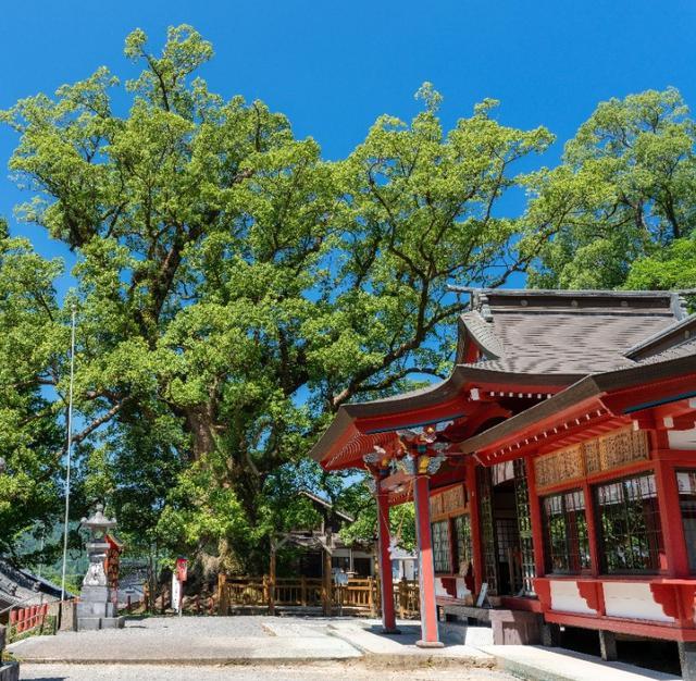 画像6: 鹿児島 歴史と自然、懐かしい日本の原風景。姶良市の魅力、再発見。