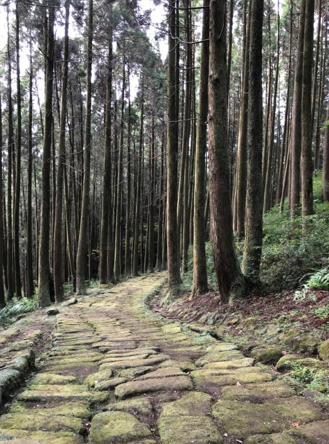 画像3: 鹿児島 歴史と自然、懐かしい日本の原風景。姶良市の魅力、再発見。