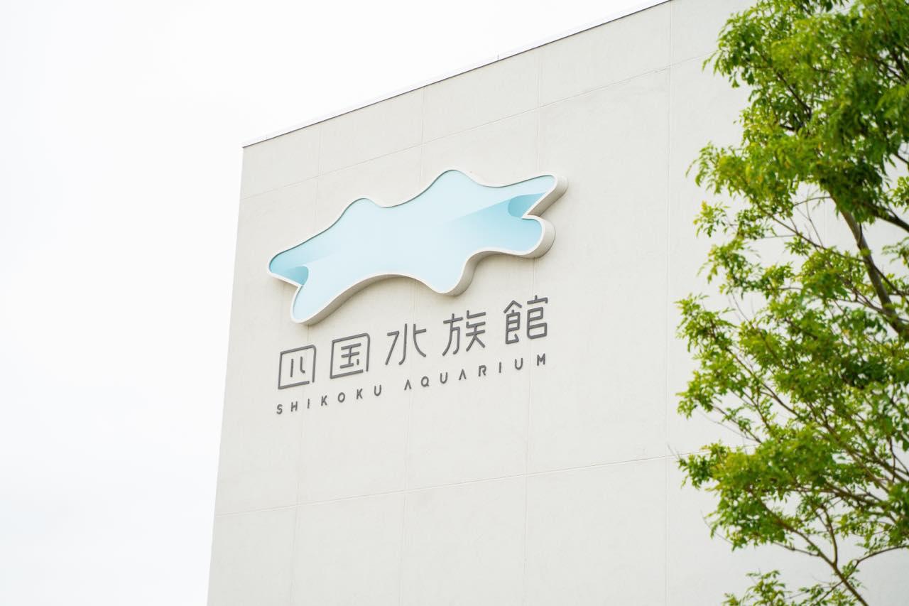 画像1: 四国ならではの水族館で、四国の水景美と生命の神秘に触れる