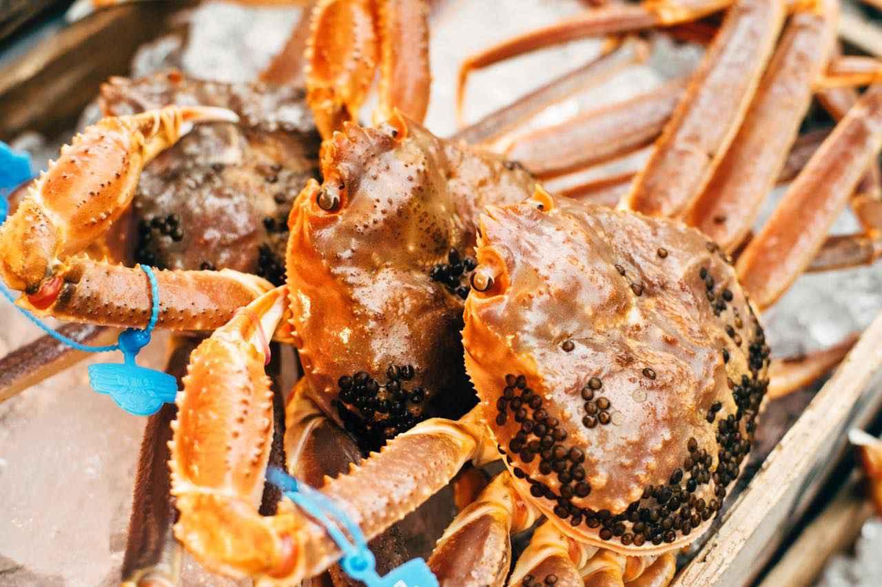 画像1: 「津居山かに」は、食通もうなる関西随一のブランド蟹