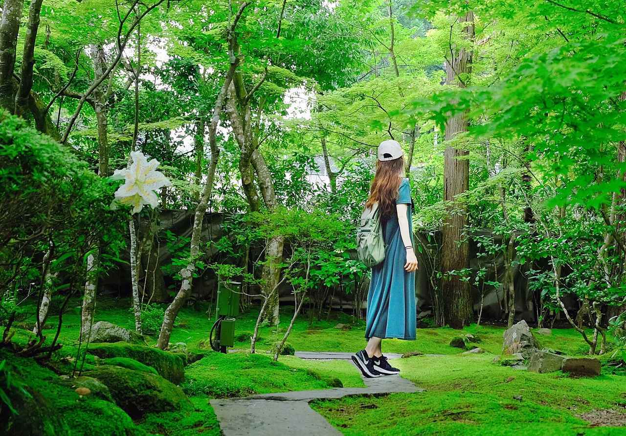 画像: 一人も女子旅も!観光と名物を堪能する宮城県の旅(前編) - OnTrip JAL