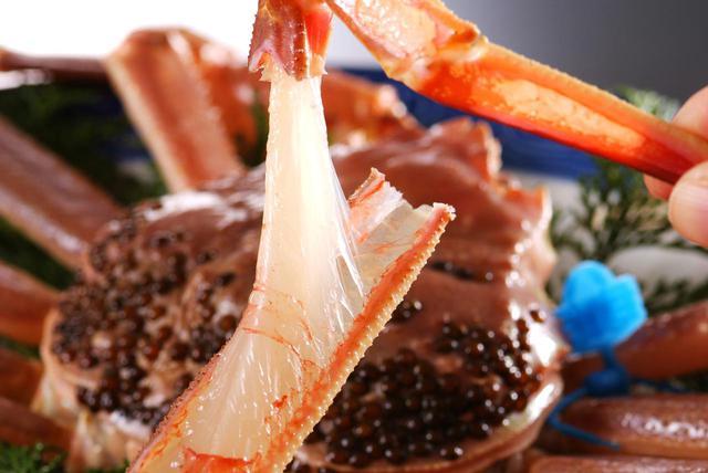 画像2: 「津居山かに」は、食通もうなる関西随一のブランド蟹