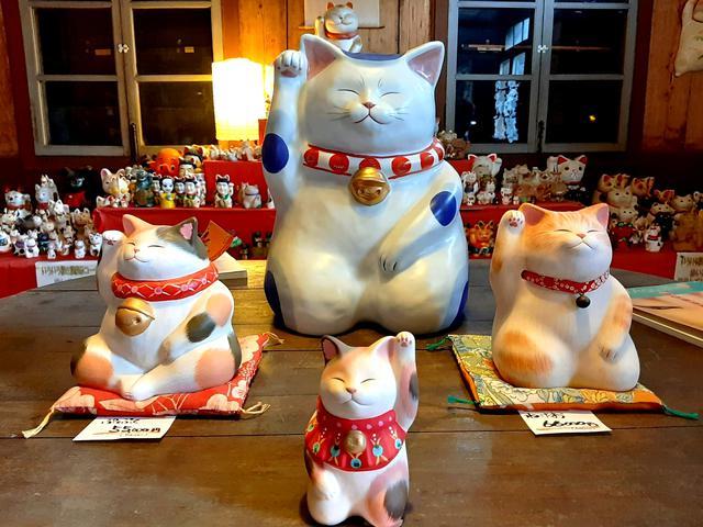 画像: 圧巻の招き猫たち。変わったタイプもあり、興味津々。9月29日は招き猫の日だそう