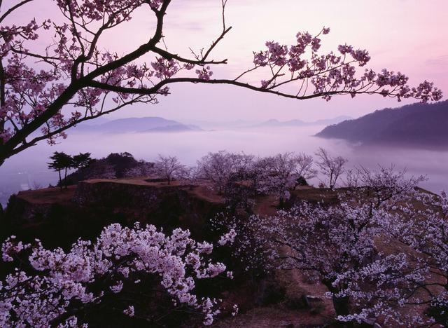 画像2: まるで海外!知られざる日本の奇跡の絶景5選