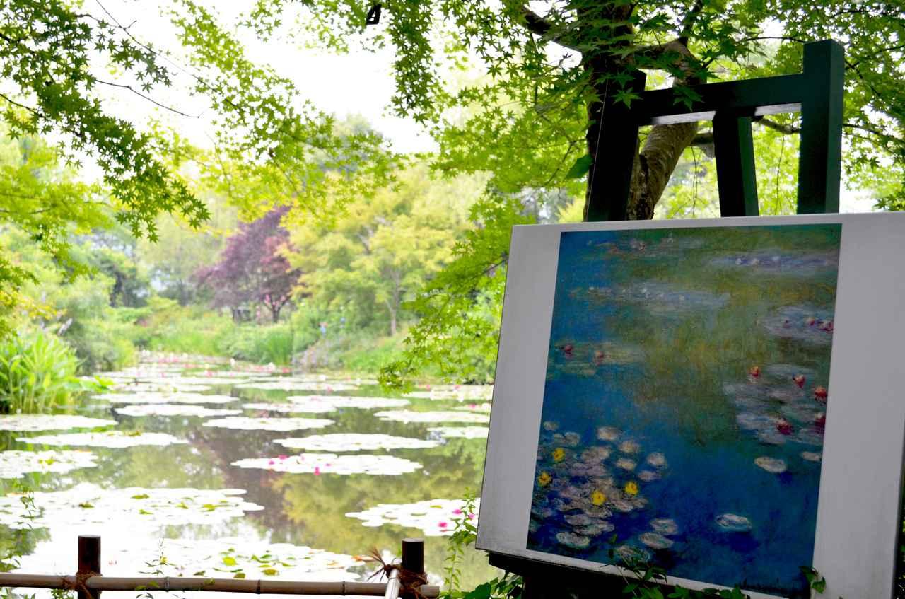 画像1: 【高知県】世界的名画の実写版!『北川村「モネの庭」マルモッタン』