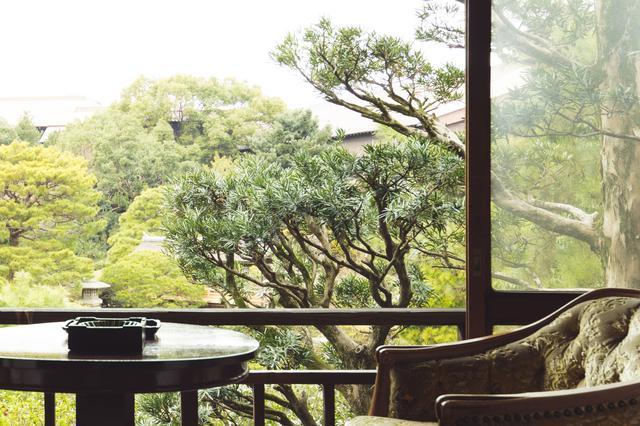 画像3: 各界著名人に愛された、大正の面影を残す老舗旅館「大丸別荘」に宿泊