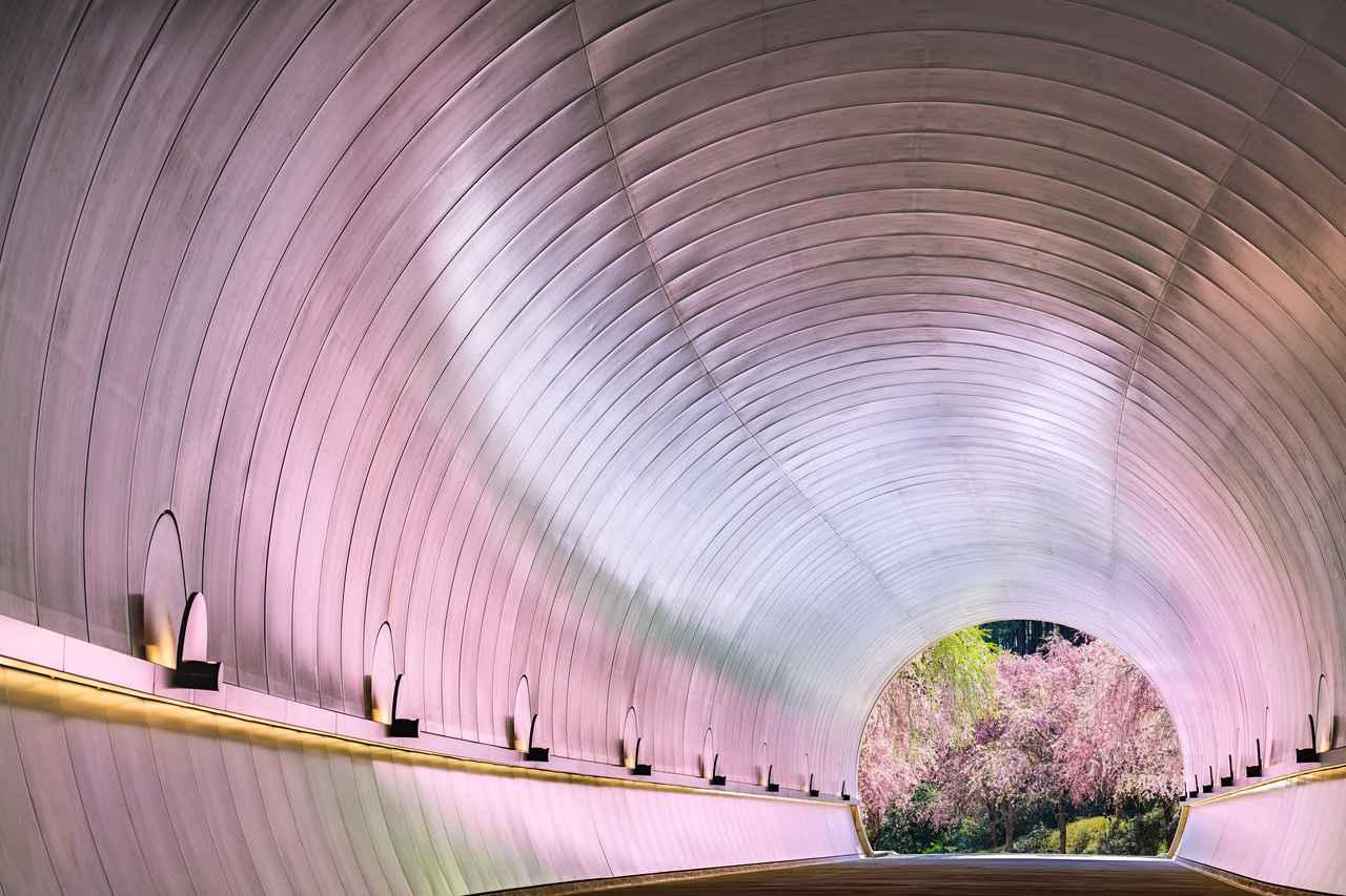 画像4: 【滋賀】「MIHO MUSEUM」で桃源郷に迷い込む