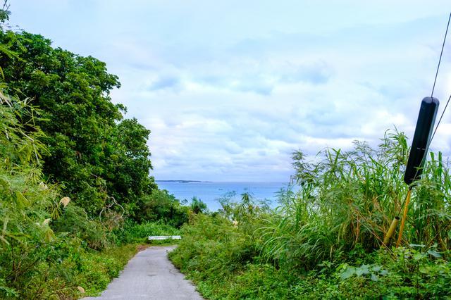 画像: 海まで下りてきました。ここからビーチへと向かいます。