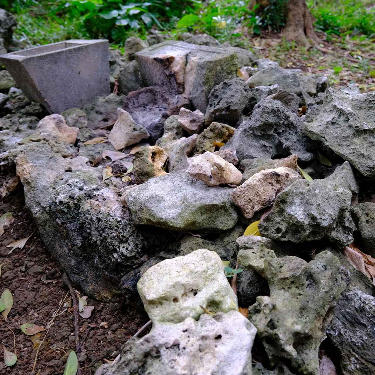 画像: 香炉が置かれている場所が御嶽の目印で、そこが拝所です。ヤブサツ御嶽はアマミキヨが最初に創った七御嶽のひとつです。