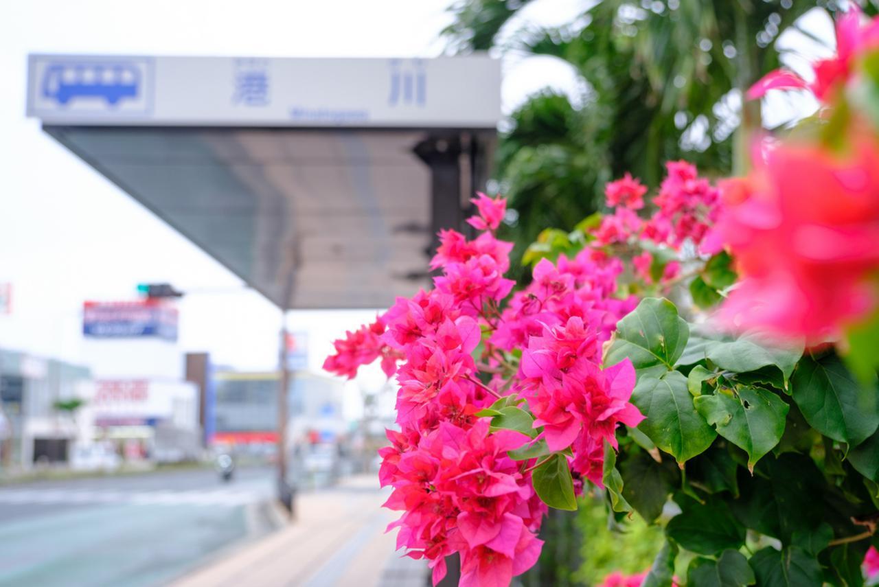 画像: 那覇空港から一路、路線バスで浦添市・港川エリアへと向かいます。バス停近くでブーゲンビリアがきれいに咲いていました。