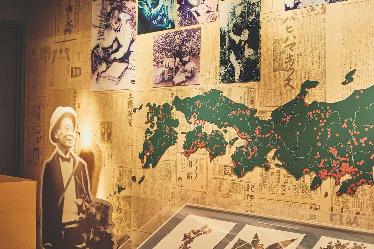 画像21: 今だからこそ心に残る思い出に。2泊3日の高知オトナ女子旅