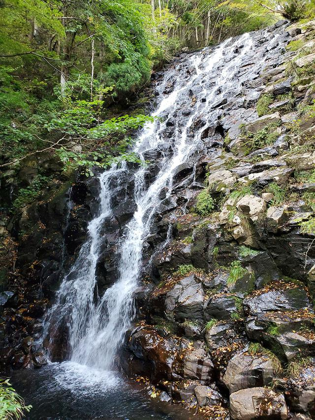 画像3: 岡山県にある津山市って、どんなところ?