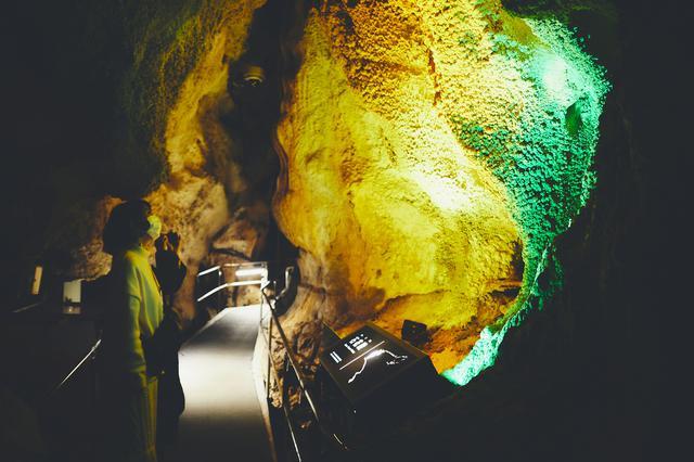 画像30: 今だからこそ心に残る思い出に。2泊3日の高知オトナ女子旅