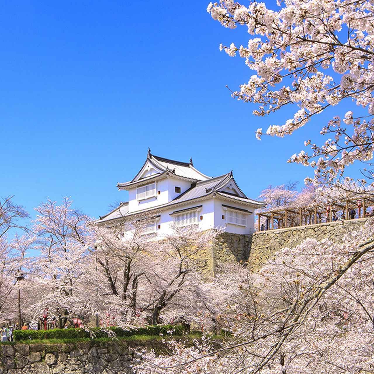 画像1: 岡山県にある津山市って、どんなところ?