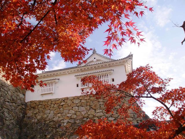 画像2: 提供:津山市観光協会