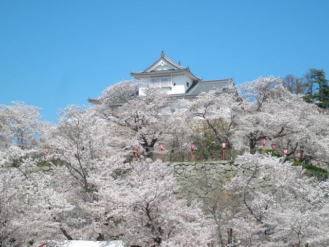 画像1: 提供:津山市観光協会