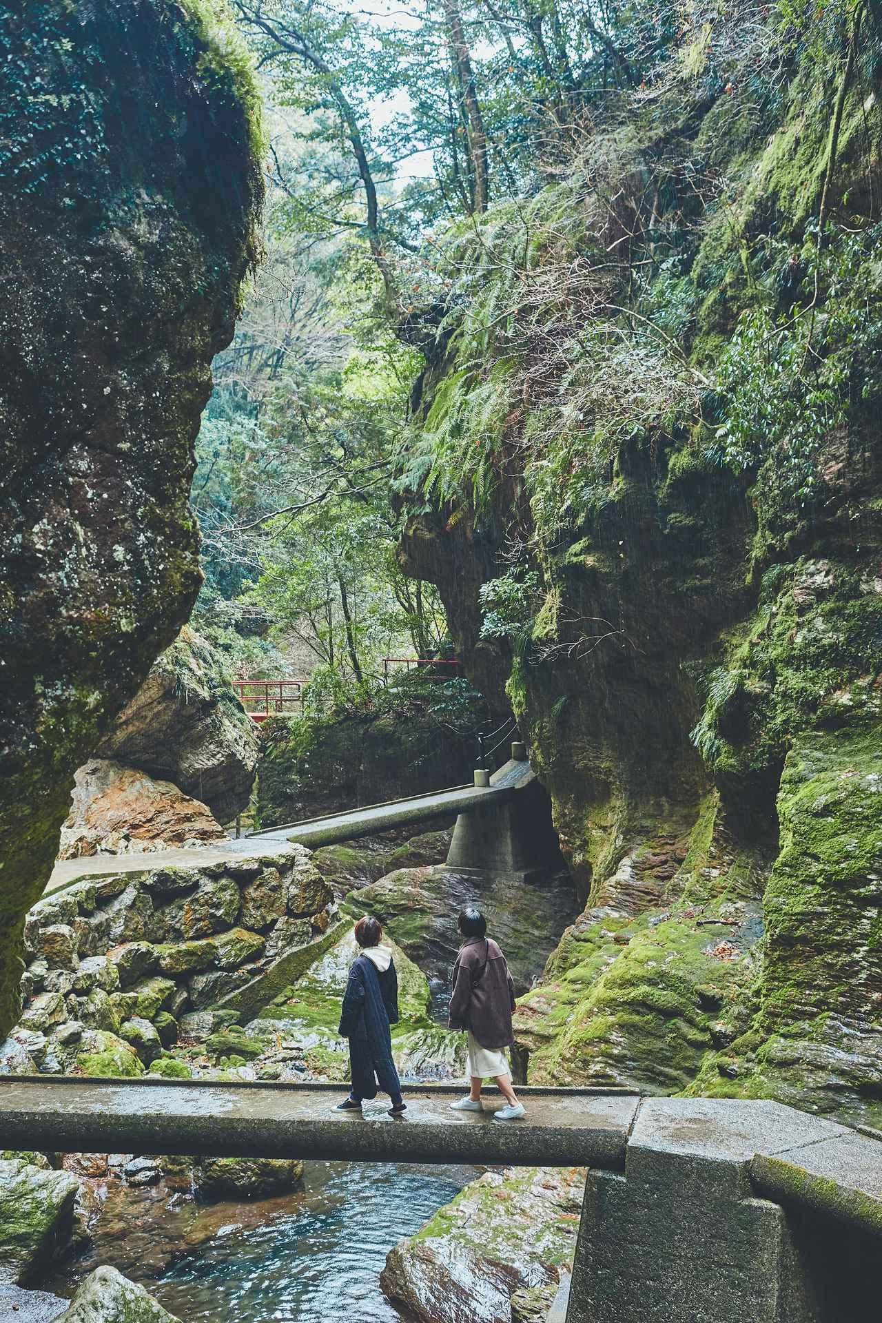 画像53: 今だからこそ心に残る思い出に。2泊3日の高知オトナ女子旅