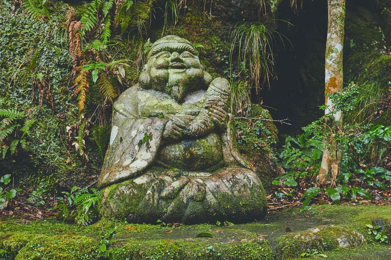 画像57: 今だからこそ心に残る思い出に。2泊3日の高知オトナ女子旅