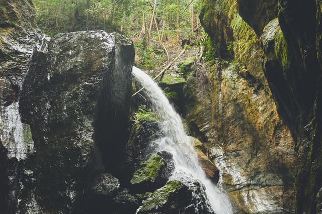 画像2: 「奇跡の清流」仁淀川と巨岩の織りなす大自然の神秘を体感