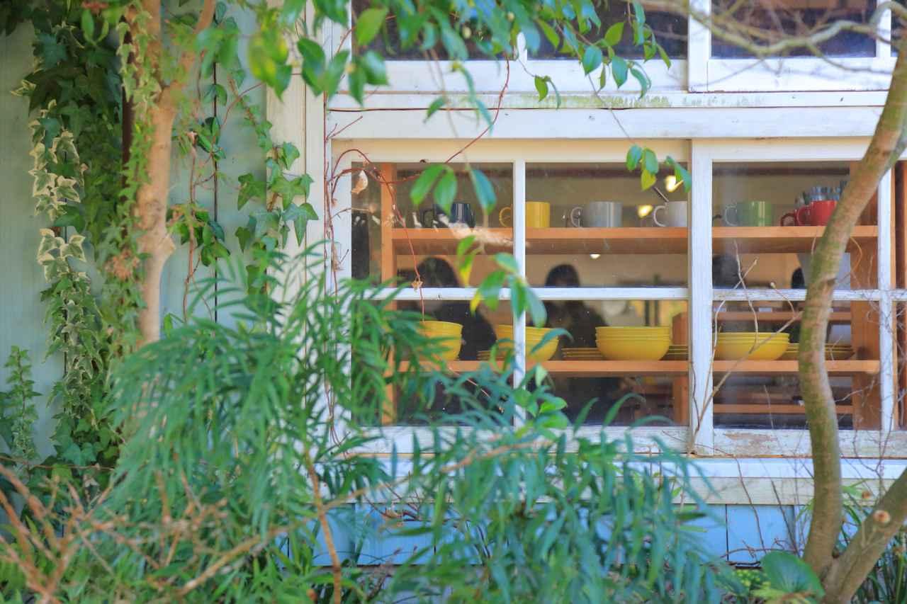 画像: 緑に覆われた外観の先に、ちらっと見えるうつわは、どれも気になる存在