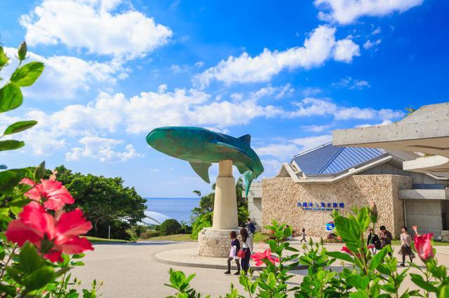 画像1: 「沖縄美ら海水族館」で、オリジナルマスクをゲット