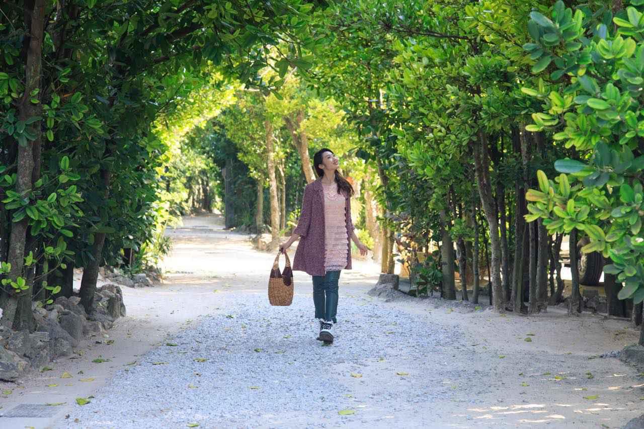 画像2: 「備瀬のフクギ並木」で、散歩をしながらグリーンシャワーを浴びよう